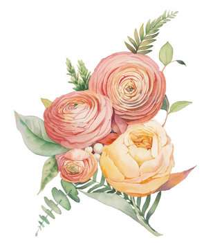 Watercolor flowers bouquet. Hand painted botanical illustration with eucalyptus leaves, ranunculus flowers, rose, fern branches isolated on white background. Floral artwork
