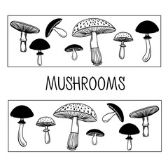 Collection of healthy and unhealthy mushrooms