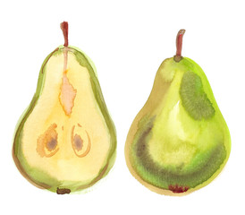 Fresh green pear cut in half painted in watercolor on clean white background