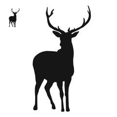 Hirsch Logo Icon