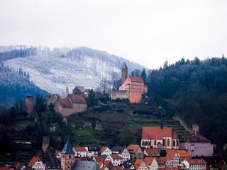 雪の朝のヒルシュホルン城(ドイツ)