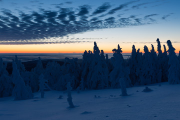 Sonnenaufgang im Harz