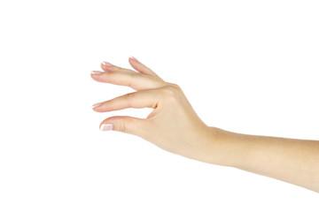 Female hand on white background.