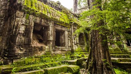 Ta Prohm temple in Angkor Wat,Siem Reap,Cambodia.