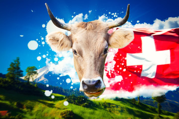 Wall Mural - Swiss welcome card