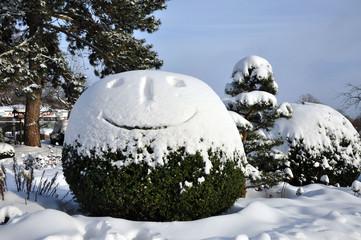 Smiling bush in the winter