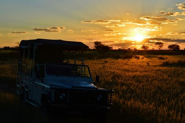 Amazing Sunset during a game drive in the savannah of Namibia