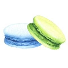 Hand drawn watercolor blue and pistachio macaron cakes vector illustration, realistic delicious sketch isolated on white background.