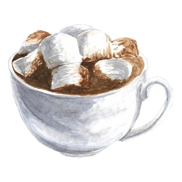 Hand drawn watercolor cup with cacao or hot chocolate and marshmallow, realistic delicious vector illustration, isolated on white background.