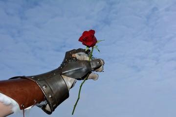 Hart aber herzlich - Eiserne Ritterhand mit roter Rose vor blauem Himmel