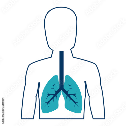 Human figure with lungs vector illustration design fichier vector - Figure libre architecture ...
