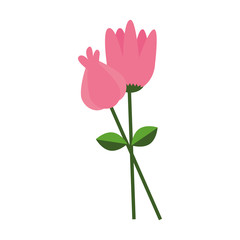 cute garden flower icon vector illustration design