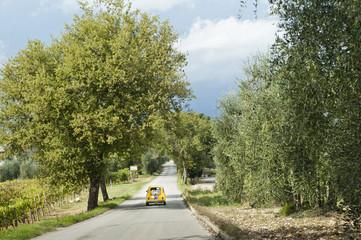auto fiat 500, matrimonio in Toscana