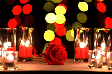Beautiful red rose a concept of love and valentine's day put on