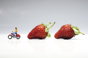Strawberries with Miniatures