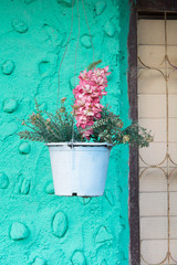 pot bouquet in blue wall