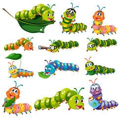 Different color caterpillar characters