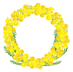 Wreath of yellow acacia flowers twigs