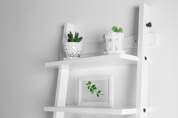Frames with leaves and succulents on stairs on white background