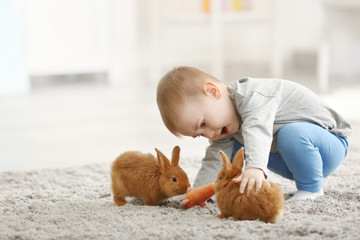 Cute little boy feeding rabbits with carrot at home