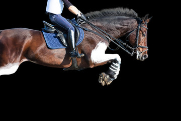 Show jumping: jumping horse isolated on black background.