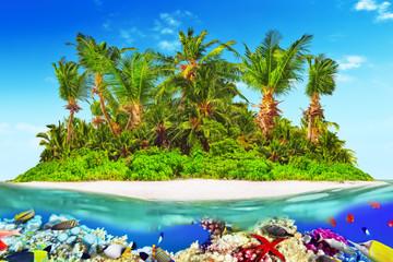 Wall Mural - Tropical island in Ocean and beautiful underwater world.