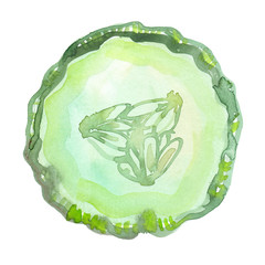 Big pale green slice of cucumber painted in watercolor on clean white background