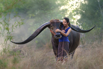 Asian woman farmer with a buffalo in the field, warm tone
