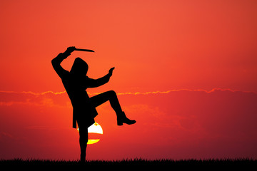 ninja silhouette at sunset