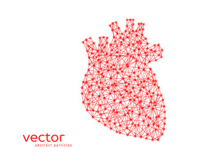 Abstract vector illustration of human heart.