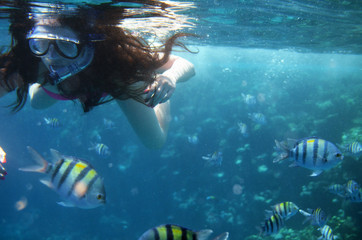 Underwater World: colored exotic fishes in the ocean and girl looks at fish