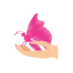 pink butterfly in the hand icon image, vector illustration design