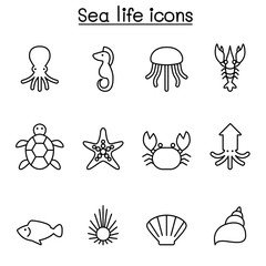 Sea life icon in thin line style icon set