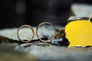 beautiful wedding rings on a stone background,on autumn leaves,bridal accessories, European Wedding, American Wedding