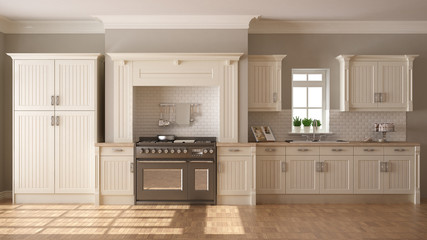 Classic kitchen, scandinavian minimal interior design with woode