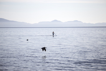 Distant view of man paddleboarding in sea against sky