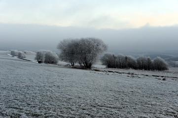 Fotorolgordijn Grijs Eisige Landschaft bei Kelberg