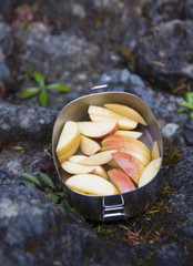 Sliced apples in lunchbox