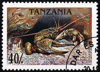 Postage stamp Tanzania 1994 Narrow-clawed crayfish