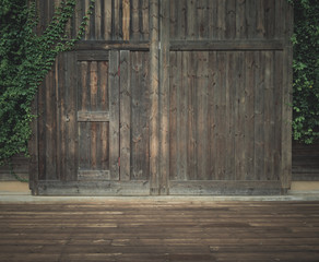 Old wooden door with green leaves