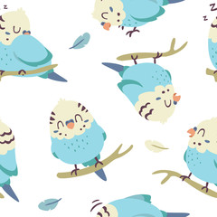 vector cartoon budgie parrot seamless pattern