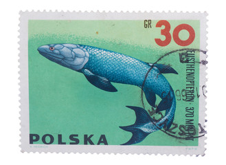 POLAND - CIRCA 1966: stamp printed in  shows a series of p
