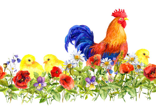 Cock rooster and small chicks in grass, flowers. Seamless pattern. Watercolor