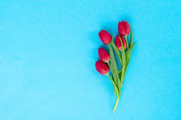 minimalistic posy of tulips on bright blue background