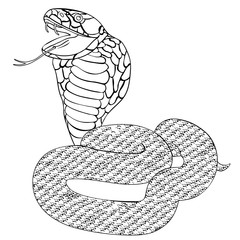 green king cobra with fangs.  illustration