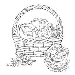 vector monochrome contour sketch of salads in basket