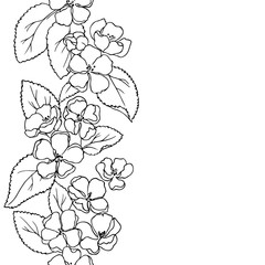 vector monochrome contour illustration of apple flowers and leaves frame stripe