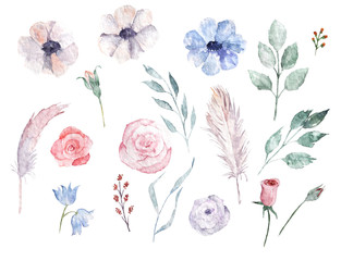 Watercolor hand drawn set. Floral isolated elements for wedding, design