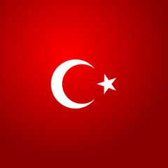 Turkey flag color vector illustration