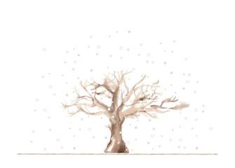 冬の公園、雪